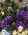 紫帶來幸運快樂